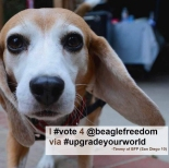 BFP Featured Photo