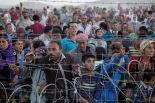Syrian Refugees, Shannon Fisher, MsShannonFisher